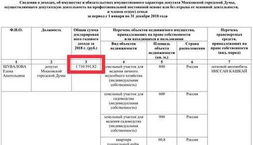 49102018shuvalova05