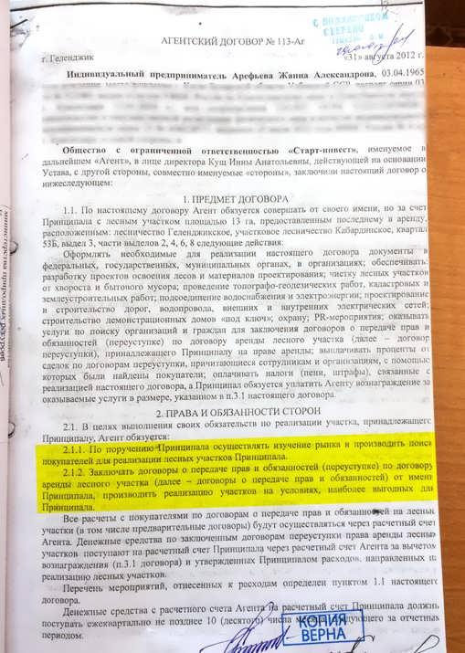 57102019remezkov81
