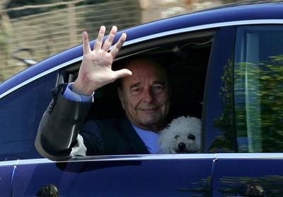 Жак Ширак и мальтийская болонка Сумо