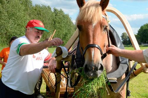Александр Лукашенко и лошадь