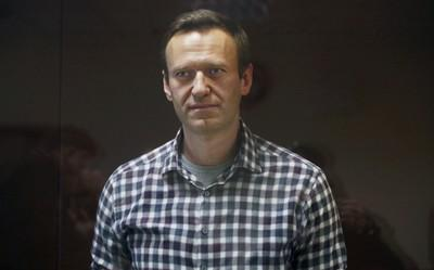 """Навального раскручивали на дипломатической """"карусели""""."""